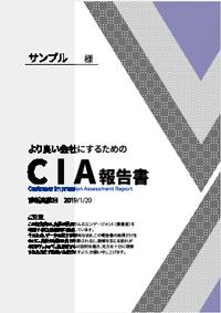 Cia診断 株式会社企業研修 プロ講師派遣